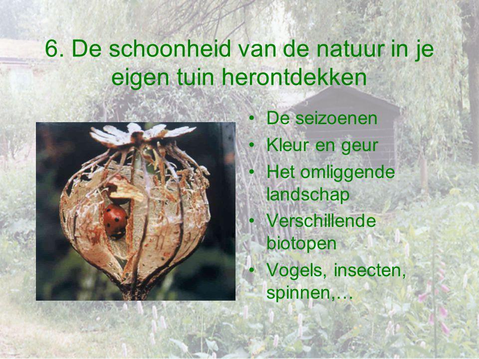 6. De schoonheid van de natuur in je eigen tuin herontdekken