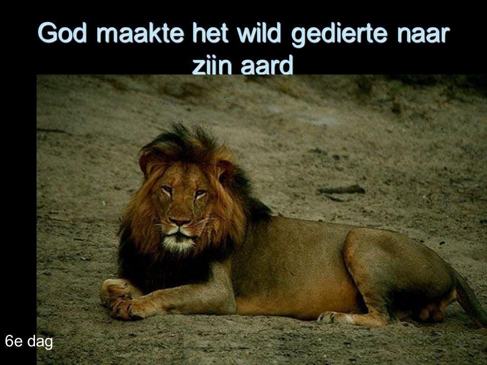God maakte het wild gedierte naar zijn aard