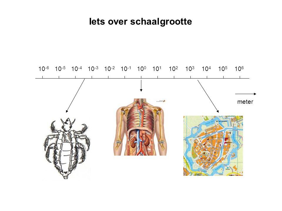 Iets over schaalgrootte