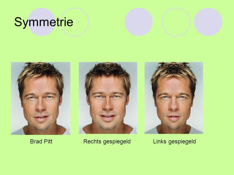 Symmetrie Brad Pitt Rechts gespiegeld Links gespiegeld