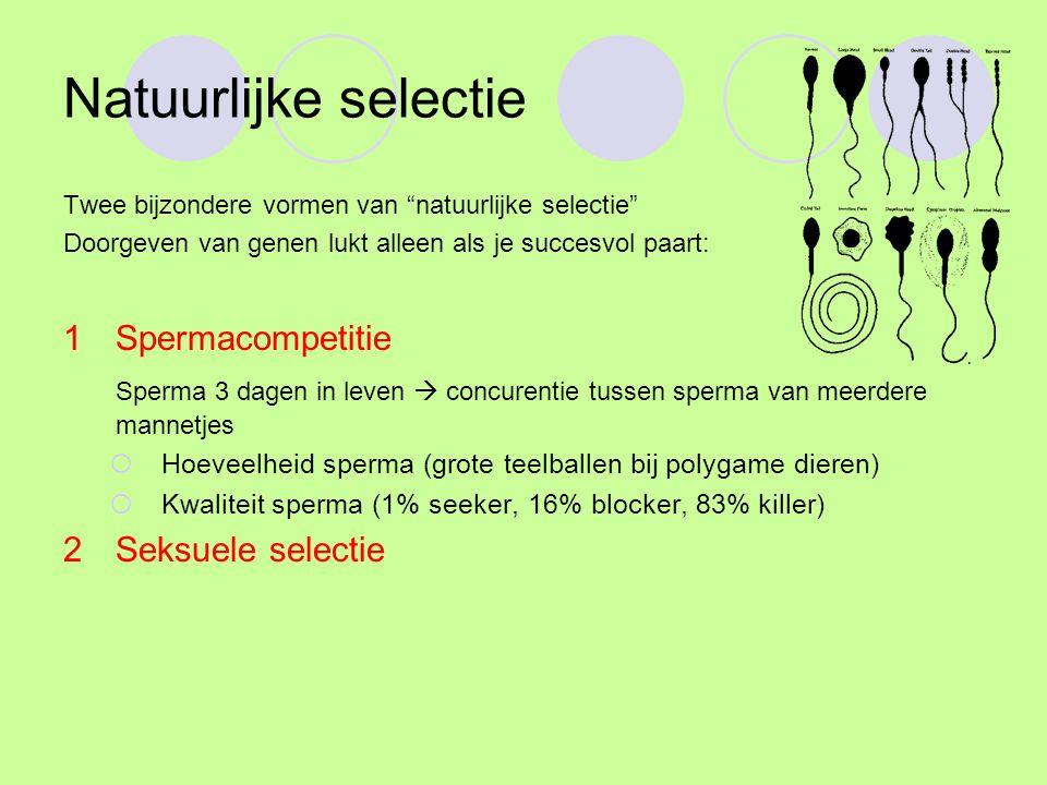 Natuurlijke selectie 1 Spermacompetitie
