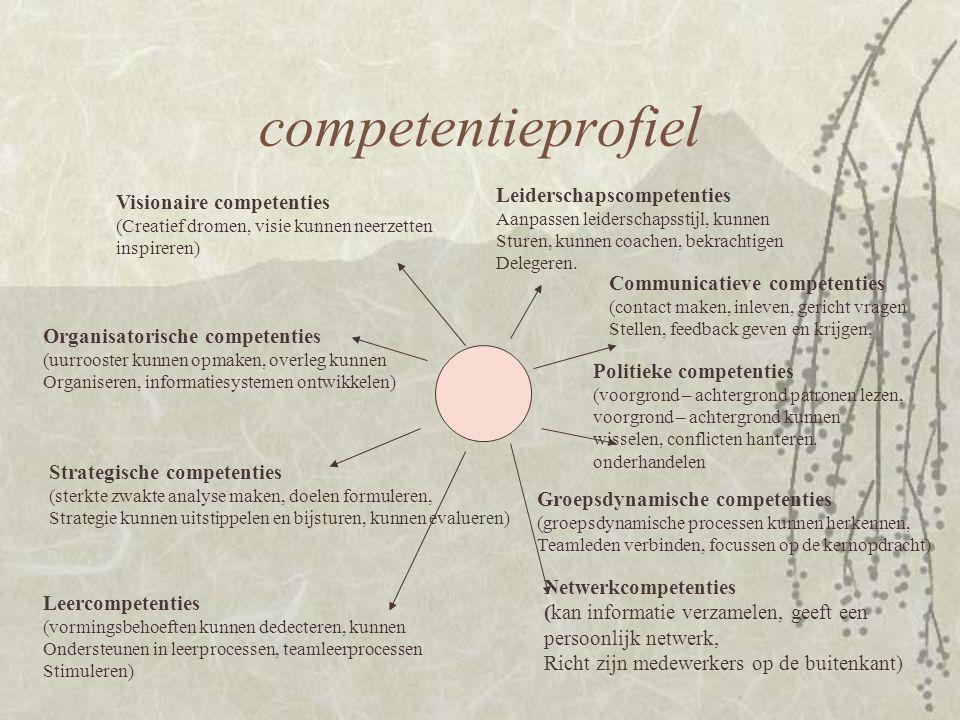 competentieprofiel Leiderschapscompetenties Visionaire competenties