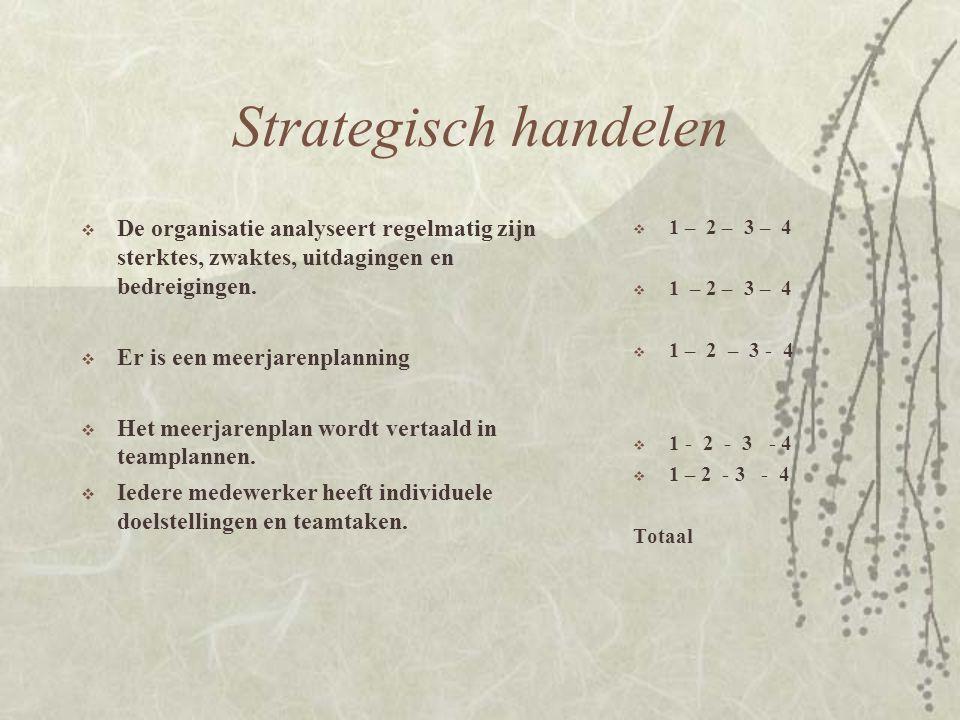 Strategisch handelen De organisatie analyseert regelmatig zijn sterktes, zwaktes, uitdagingen en bedreigingen.