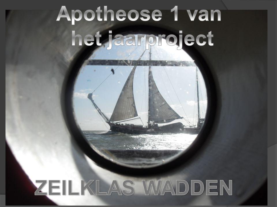 Apotheose 1 van het jaarproject ZEILKLAS WADDEN