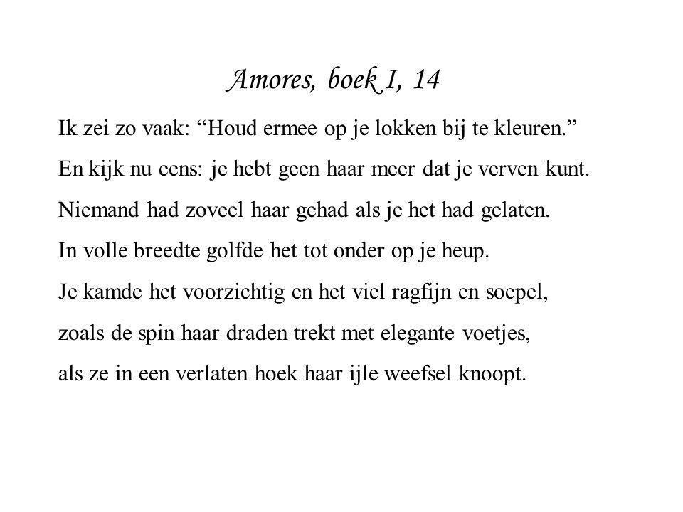Amores, boek I, 14 Ik zei zo vaak: Houd ermee op je lokken bij te kleuren. En kijk nu eens: je hebt geen haar meer dat je verven kunt.