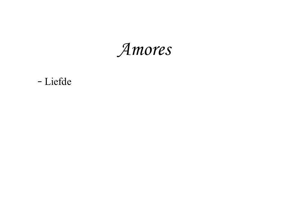 Amores Liefde