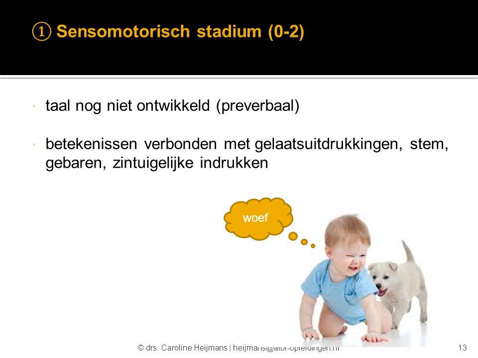 ① Sensomotorisch stadium (0-2)