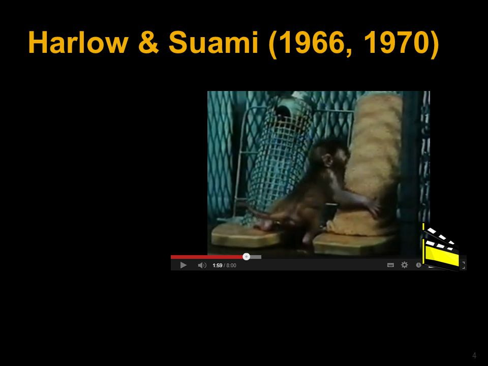 Harlow & Suami (1966, 1970) © drs. Caroline Heijmans | heijmans@ator-opleidingen.nl 4