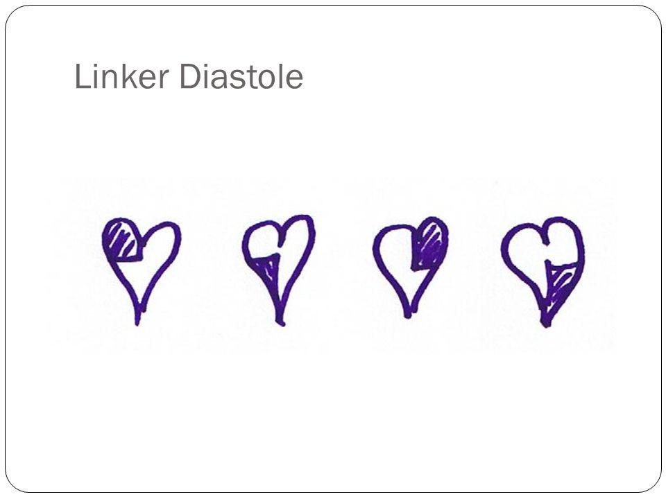 Linker Diastole
