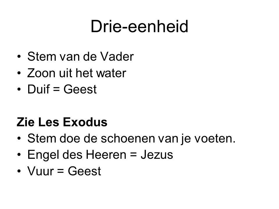 Drie-eenheid Stem van de Vader Zoon uit het water Duif = Geest