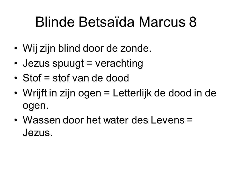 Blinde Betsaïda Marcus 8