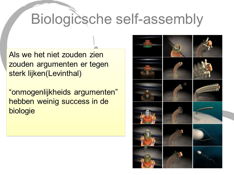 Biologicsche self-assembly