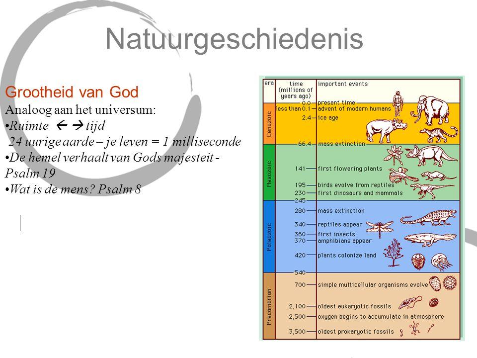 Natuurgeschiedenis Grootheid van God Analoog aan het universum: