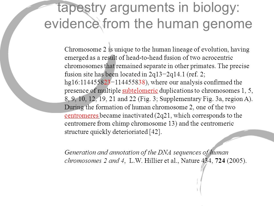 tapestry arguments in biology: evidence from the human genome