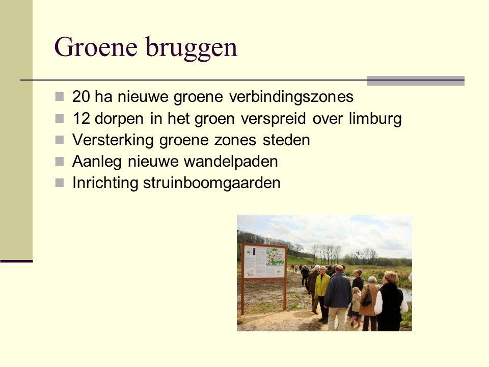 Groene bruggen 20 ha nieuwe groene verbindingszones