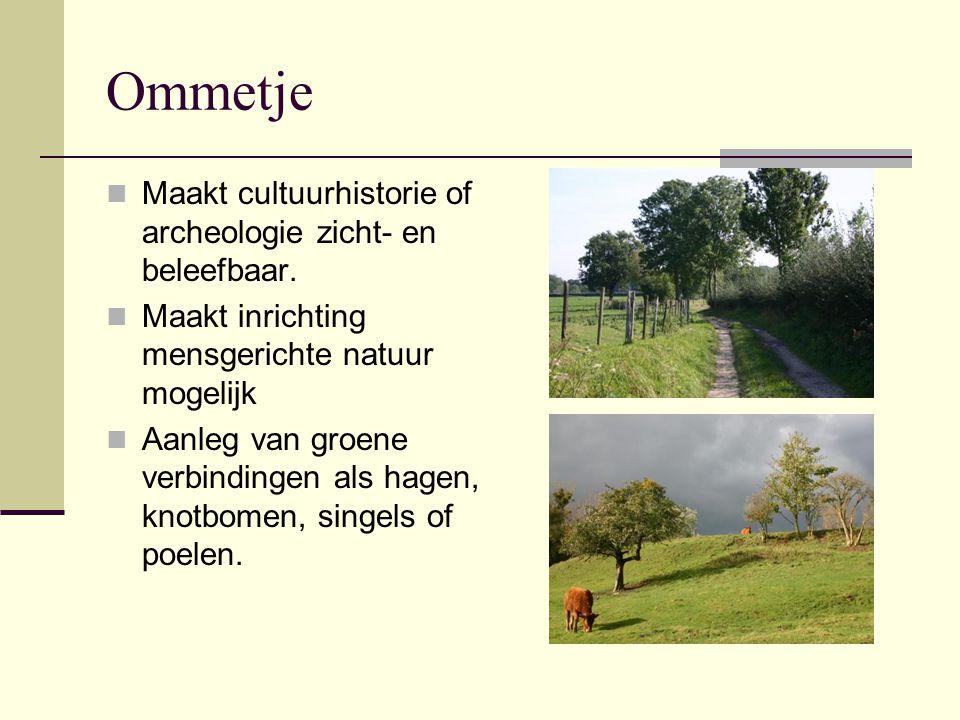 Ommetje Maakt cultuurhistorie of archeologie zicht- en beleefbaar.