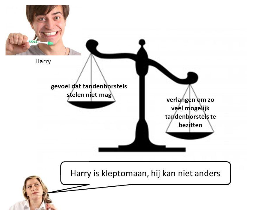 Harry is kleptomaan, hij kan niet anders