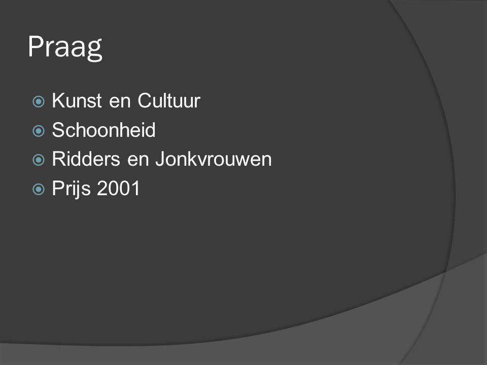 Praag Kunst en Cultuur Schoonheid Ridders en Jonkvrouwen Prijs 2001
