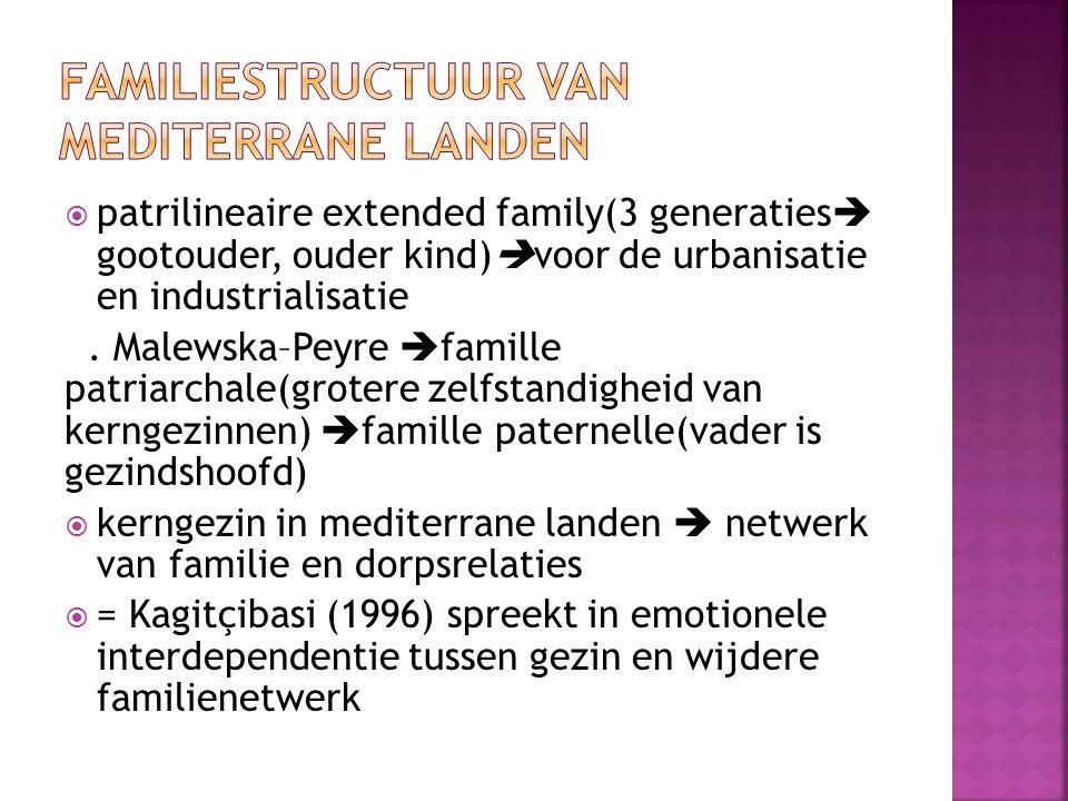 Familiestructuur van mediterrane landen