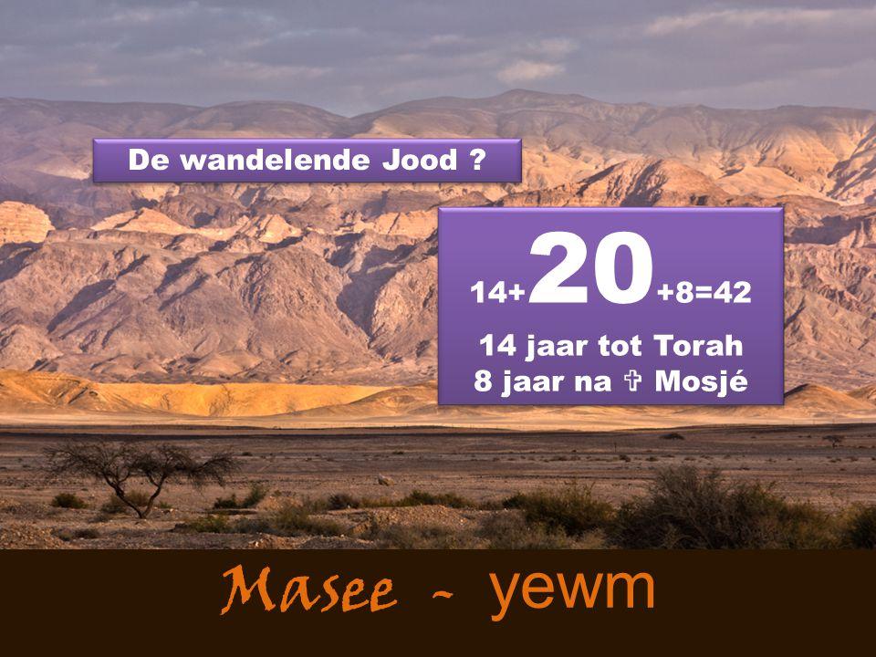 Masee - yewm De wandelende Jood 14+20+8=42 14 jaar tot Torah