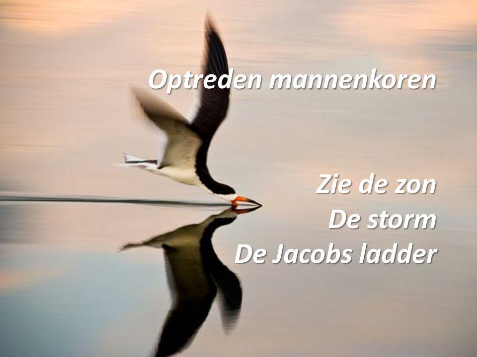Optreden mannenkoren Zie de zon De storm De Jacobs ladder