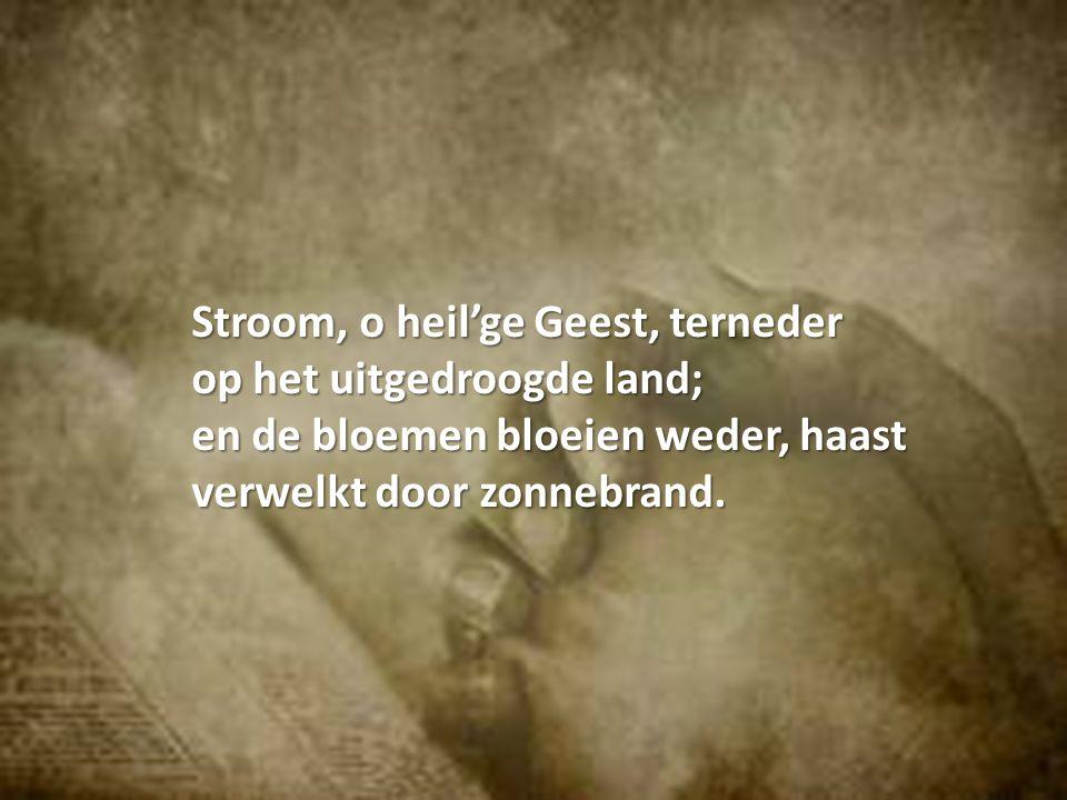 Stroom, o heil'ge Geest, terneder