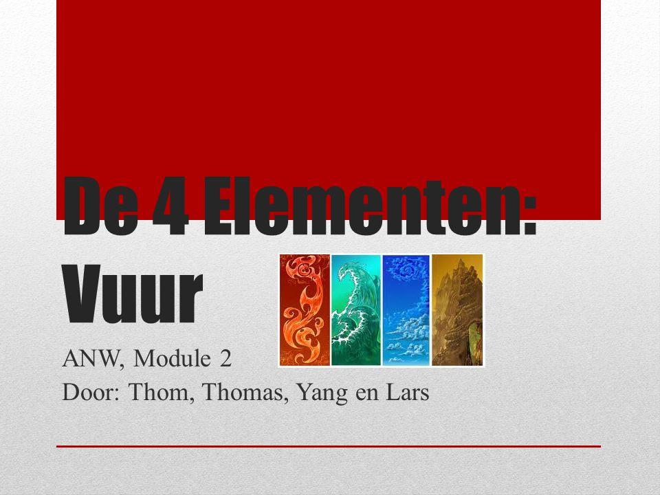 ANW, Module 2 Door: Thom, Thomas, Yang en Lars