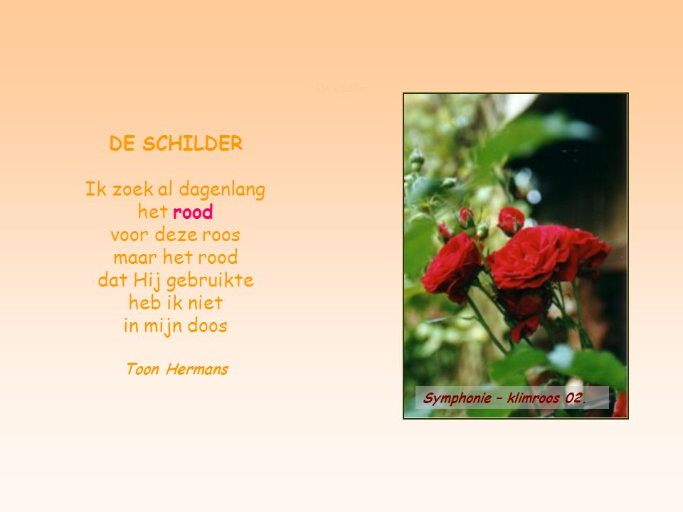 De schilder DE SCHILDER. Ik zoek al dagenlang het rood voor deze roos maar het rood dat Hij gebruikte heb ik niet in mijn doos.