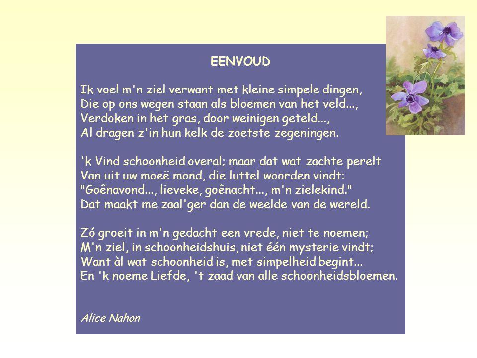 Eenvoud – Alice Nahon EENVOUD.