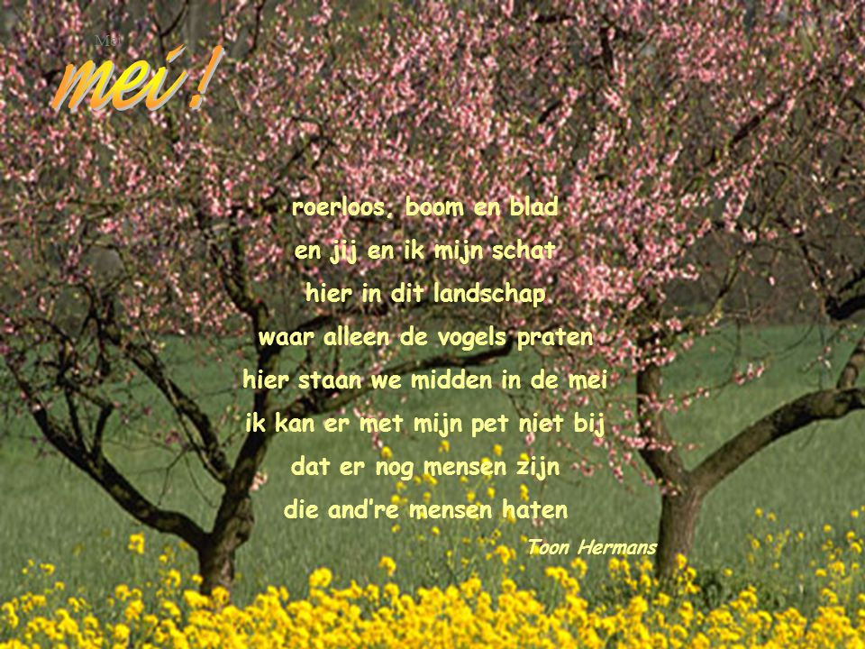 mei ! roerloos, boom en blad en jij en ik mijn schat
