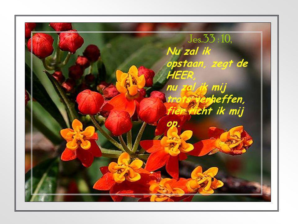 Jes.33 : 10, Nu zal ik opstaan, zegt de HEER,