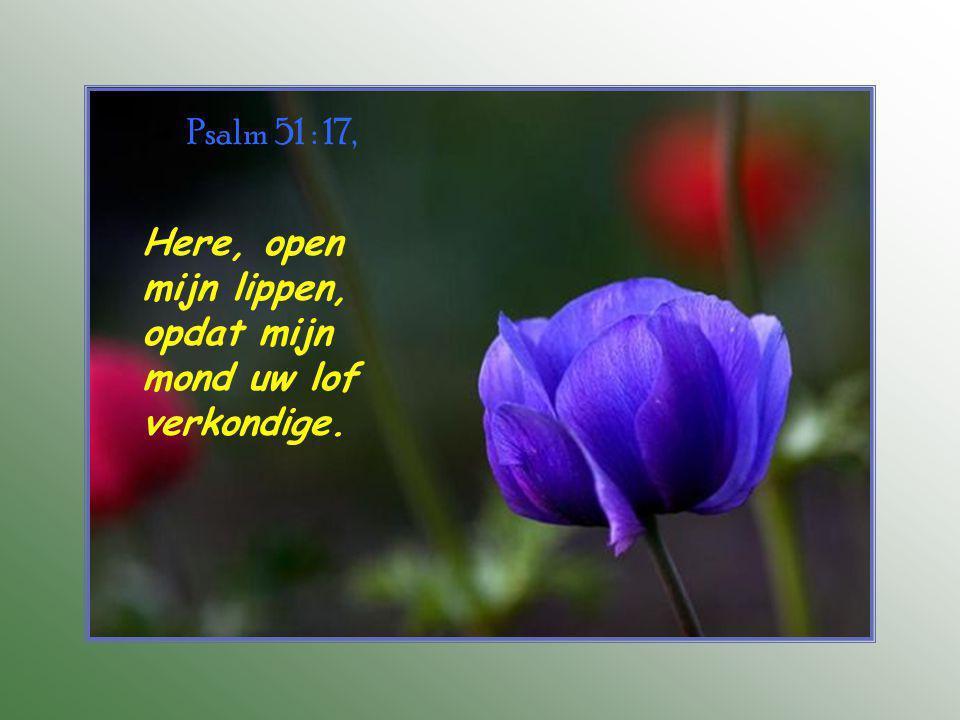 Psalm 51 : 17, Here, open mijn lippen, opdat mijn mond uw lof verkondige.