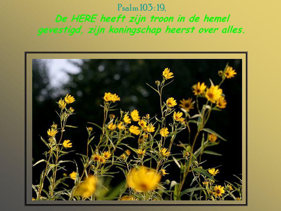 Psalm 103 : 19, De HERE heeft zijn troon in de hemel gevestigd, zijn koningschap heerst over alles.