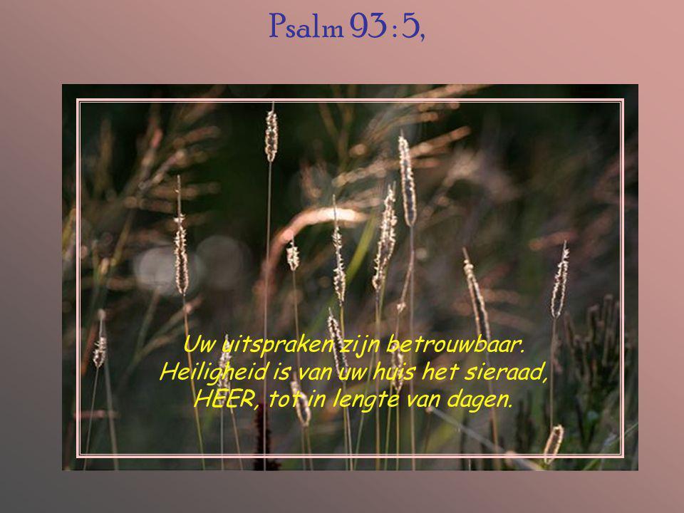 Psalm 93 : 5, Uw uitspraken zijn betrouwbaar.
