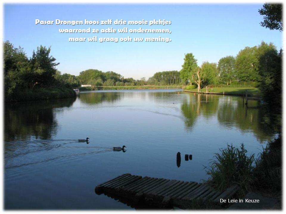 Pasar Drongen koos zelf drie mooie plekjes waarrond ze actie wil ondernemen, maar wil graag ook uw mening.