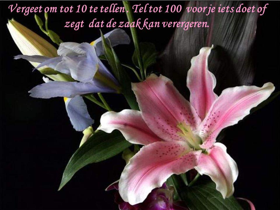 Vergeet om tot 10 te tellen