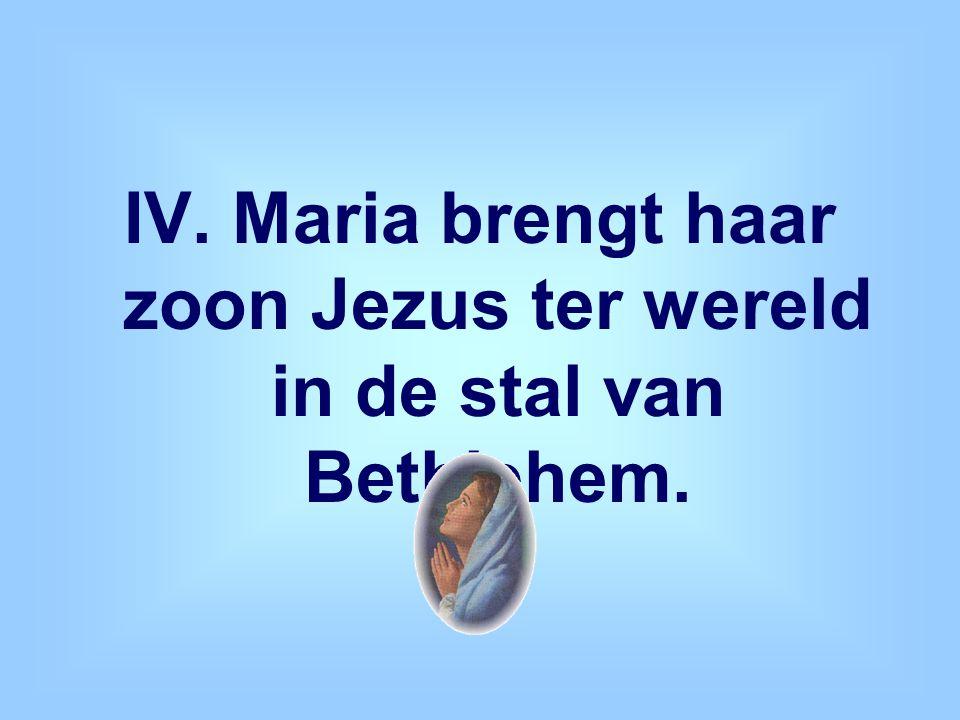 IV. Maria brengt haar zoon Jezus ter wereld in de stal van Bethlehem.