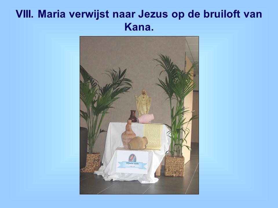 VIII. Maria verwijst naar Jezus op de bruiloft van Kana.