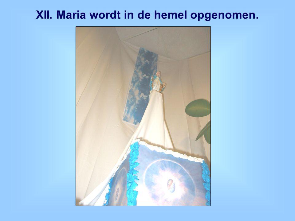 XII. Maria wordt in de hemel opgenomen.