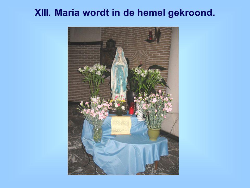 XIII. Maria wordt in de hemel gekroond.