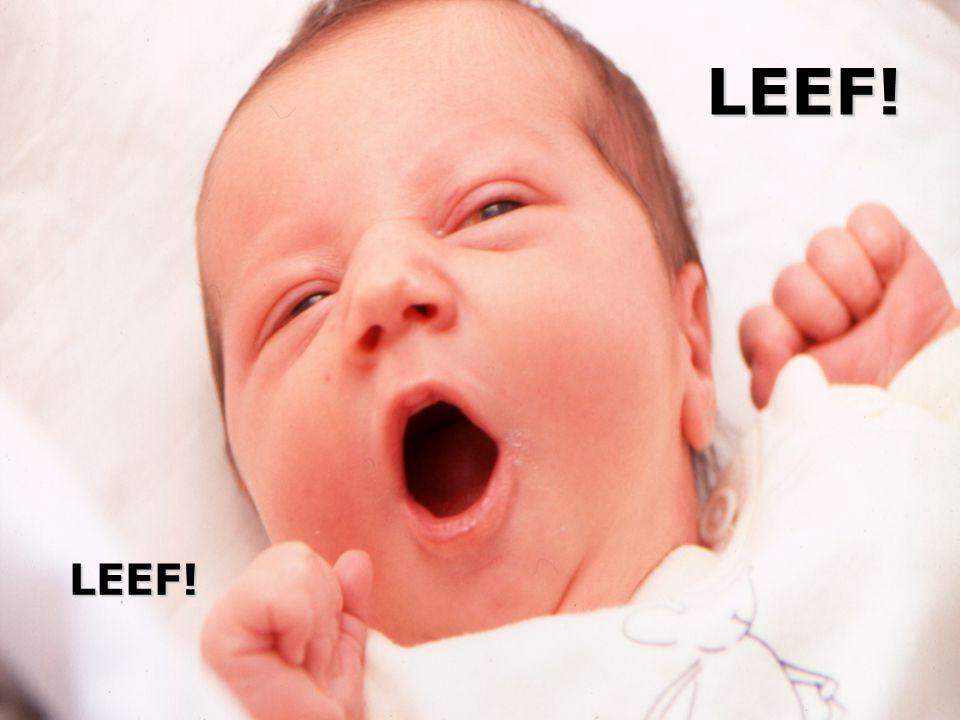 LEEF! LEEF!