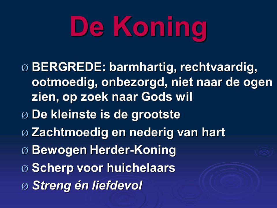 De Koning BERGREDE: barmhartig, rechtvaardig, ootmoedig, onbezorgd, niet naar de ogen zien, op zoek naar Gods wil.