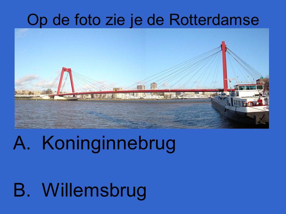 Op de foto zie je de Rotterdamse