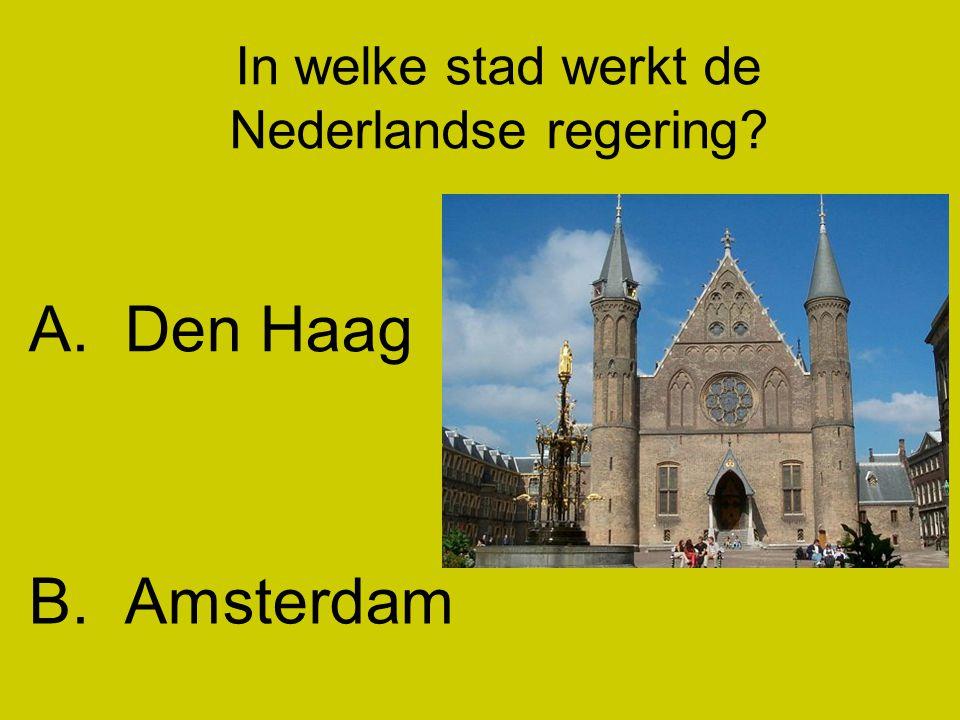 In welke stad werkt de Nederlandse regering