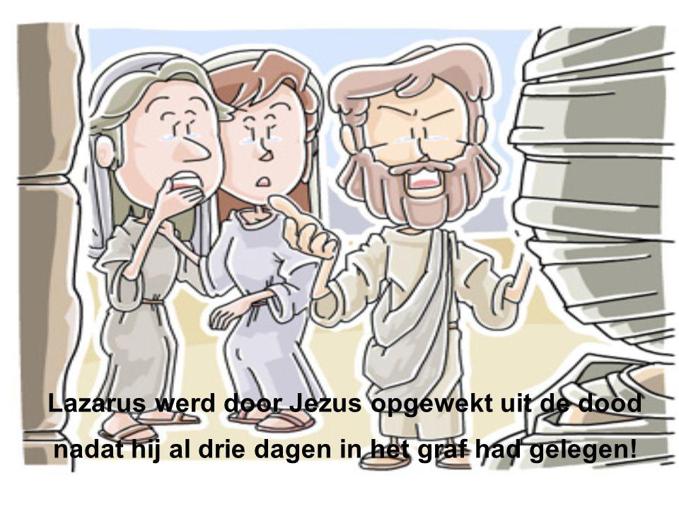 Lazarus werd door Jezus opgewekt uit de dood nadat hij al drie dagen in het graf had gelegen!