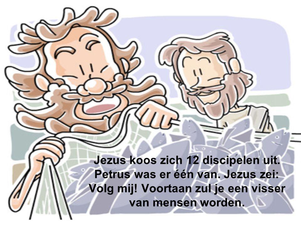 Jezus koos zich 12 discipelen uit. Petrus was er één van