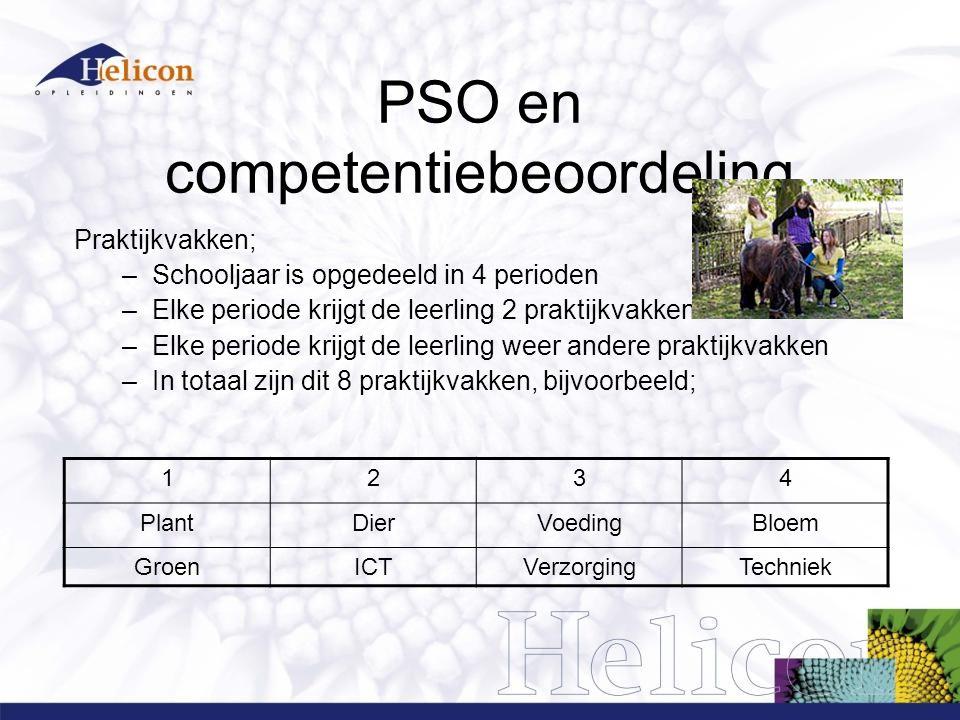 PSO en competentiebeoordeling