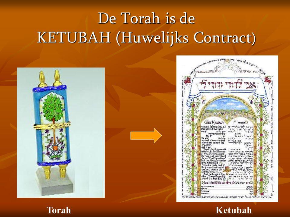 De Torah is de KETUBAH (Huwelijks Contract)