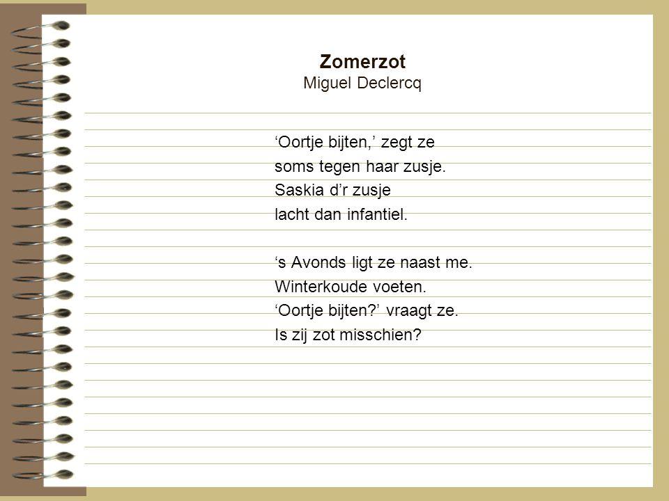 Zomerzot Miguel Declercq