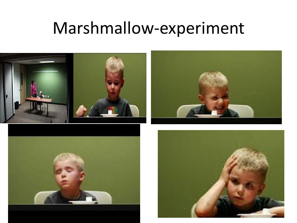 Marshmallow-experiment